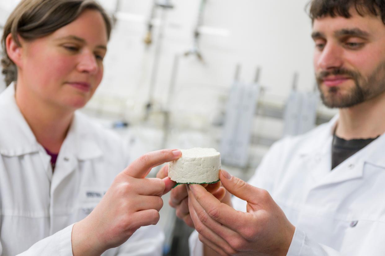 In der Labortofurei stellen Kristina Bachteler und Kollege Stefan Paul kleine Testtofus her