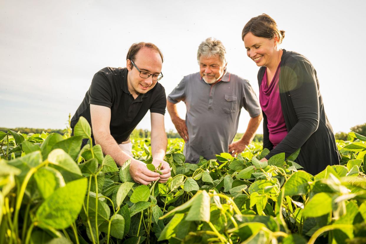 Taifun-Sojaberater Peter und Kristina begutachten gemeinsam mit Landwirt Otmar Binder (Mitte) dessen Sojafeld.