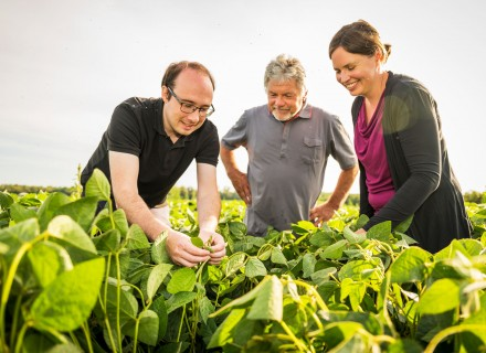 Soybean consultants Peter and Kristina inspect a soybean field together with the farmer, Otmar Binder (centre).