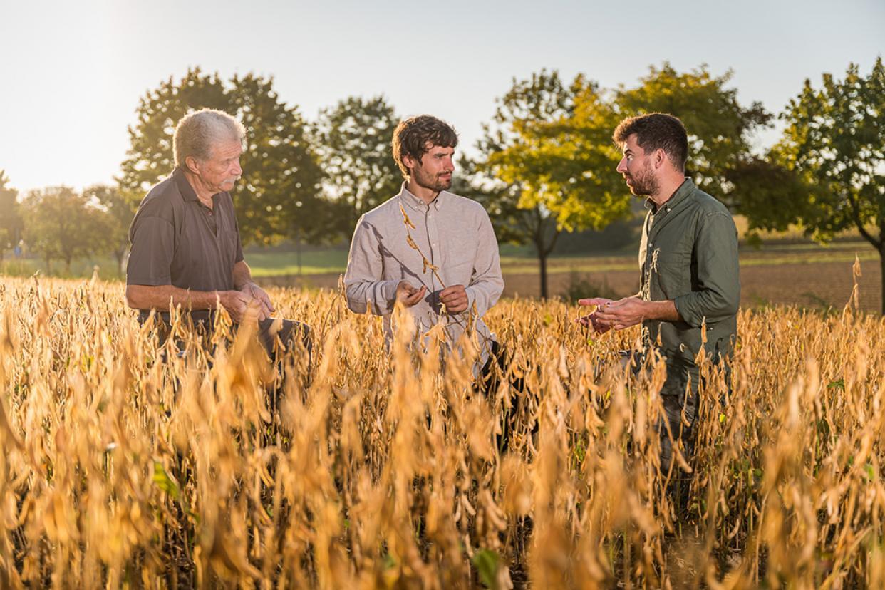 Die Landwirte Schill, hier im Gespräch mit Stefan aus dem Taifun-Sojateam (Mitte), bauen in zweiter Generation Bio-Soja nahe Freiburg an.