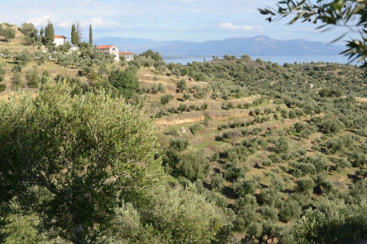 The picturesque landscape of Amphissa, Greece